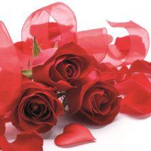 Serviette mit rote Rosen Motiv 20 Stück 33*33 cm